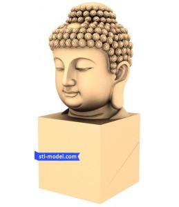 Buddha head-Buddha head